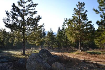 McCall Residential Lots & Land For Sale: Tbd S Samson Trail