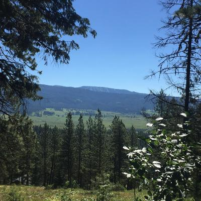 New Meadows Residential Lots & Land For Sale: Lot 25 Skyline Drive