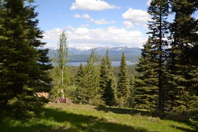 McCall Residential Lots & Land For Sale: 1414 Club Hill Boulevard