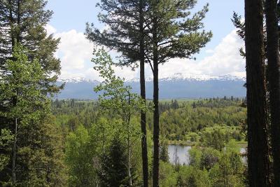 Residential Lots & Land For Sale: Lot 7 Blackhawk Lake Drive