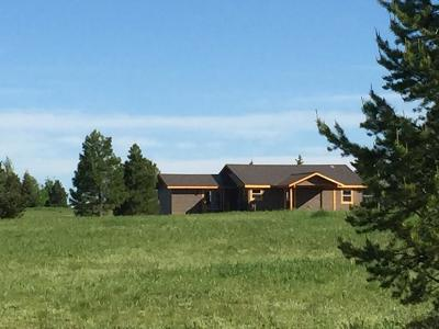 McCall Single Family Home For Sale: 985 Ridge Road