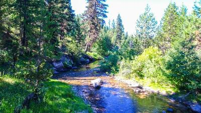 Cascade Residential Lots & Land For Sale: Tbd4 Clear Creek Road