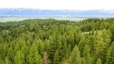 McCall Residential Lots & Land For Sale: Tbd2 Paddy Flat Road