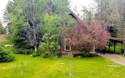 McCall Single Family Home For Sale: 616 Syringa Drive