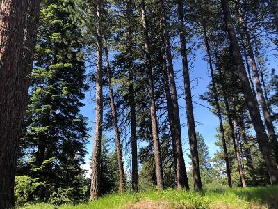 McCall Residential Lots & Land For Sale: 720 Spruce Street