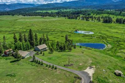 McCall ID Single Family Home For Sale: $1,495,000