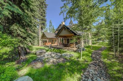 McCall ID Single Family Home For Sale: $929,000