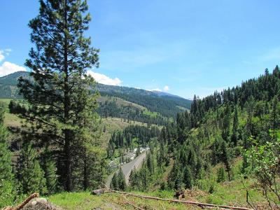 Riggins Residential Lots & Land For Sale: Tbd S Hwy 95