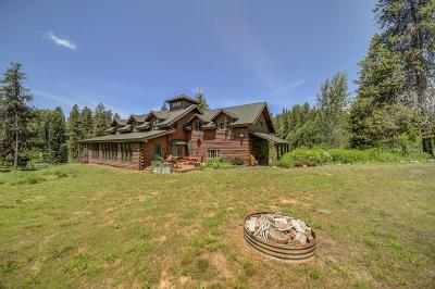 Valley County Single Family Home For Sale: 14078 Morell Road