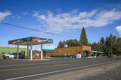 McCall Commercial For Sale: 13845 Hwy 55