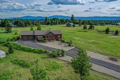 McCall Single Family Home For Sale: 970 Ridge Road