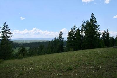 McCall Residential Lots & Land For Sale: Lot 8 Club Hill Boulevard