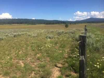 McCall Residential Lots & Land For Sale: Tbd West Valley Road