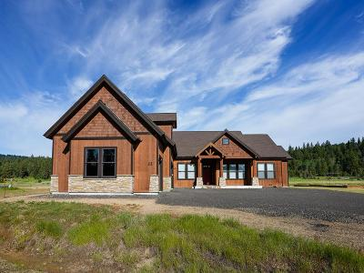 McCall ID Single Family Home For Sale: $859,000
