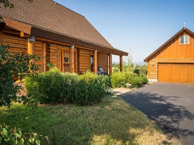 McCall Single Family Home For Sale: 13975 Easy Street
