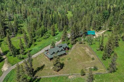 McCall Single Family Home For Sale: 14078 Morell Road