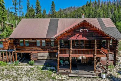 Idaho County, Valley County Single Family Home For Sale: 419 Main Street