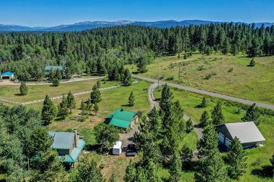 McCall Single Family Home For Sale: 1280 S Samson Trail