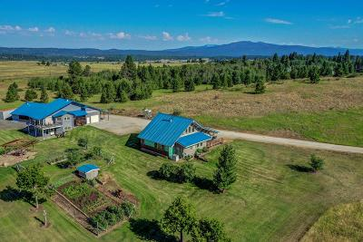 McCall ID Single Family Home For Sale: $879,000