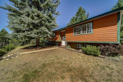 McCall Single Family Home For Sale: 900 Alpine Street