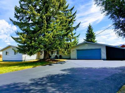 McCall Single Family Home For Sale: 407 S 3rd Street