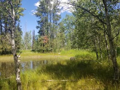 McCall Residential Lots & Land For Sale: Tbd Pine Terrace Drive