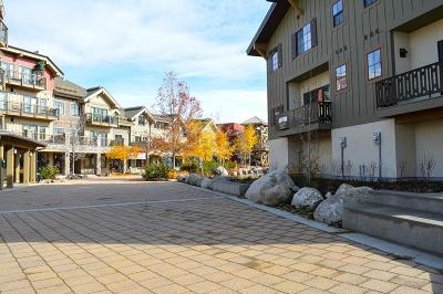 McCall Condo/Townhouse For Sale: 320 Silverpine Drive