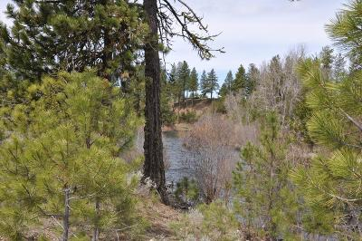 McCall Residential Lots & Land For Sale: 253 Morgan Drive
