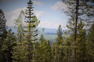 McCall Residential Lots & Land For Sale: 1807 Boulder Lake Road