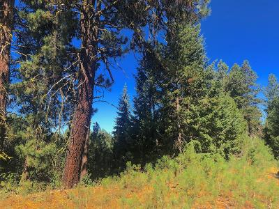 McCall Residential Lots & Land For Sale: 745 Chad Loop