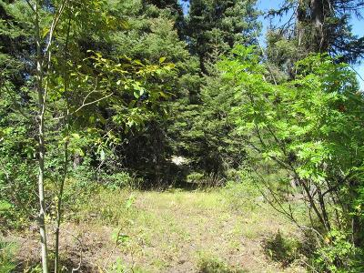 Cascade Residential Lots & Land For Sale: 529 Brenda Drive