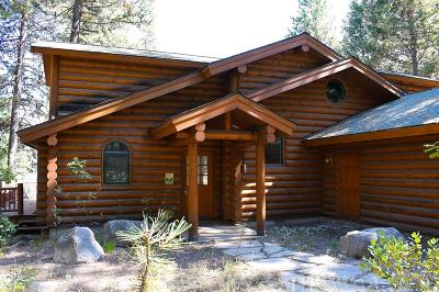 McCall ID Single Family Home For Sale: $2,200,000