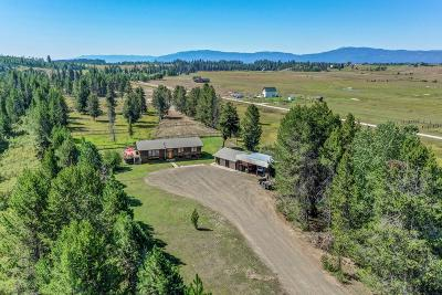 McCall Single Family Home For Sale: 1391 Elo Road