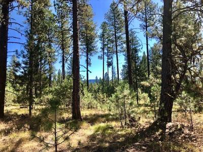 New Meadows Residential Lots & Land For Sale: 3658 Hwy 95