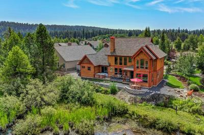 McCall Single Family Home For Sale: 137 Brundage View Court