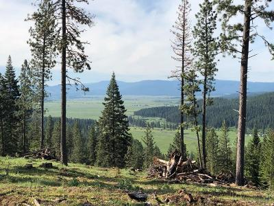New Meadows Residential Lots & Land For Sale: Tbd Hwy 95
