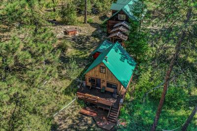 McCall Single Family Home For Sale: 74 Jughandle Drive