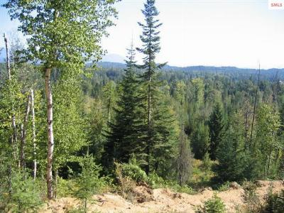 Sandpoint ID Residential Lots & Land For Sale: $75,000