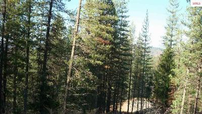 Residential Lots & Land For Sale: 127 Trail Blazer Court