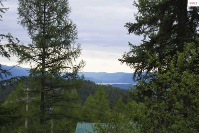Sandpoint Residential Lots & Land For Sale: Nna Parallel Run Lot 7
