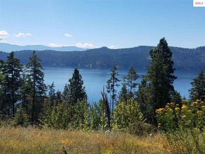 Sandpoint Residential Lots & Land For Sale: 93 Farkle Flats