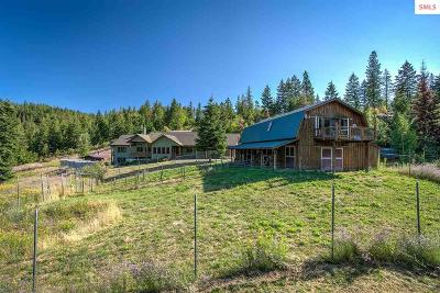 Sandpoint Single Family Home For Sale: Trout Creek Ranch Rd