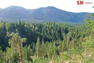 Bonners Ferry Residential Lots & Land For Sale: Lot 2 Pinnacle Circle