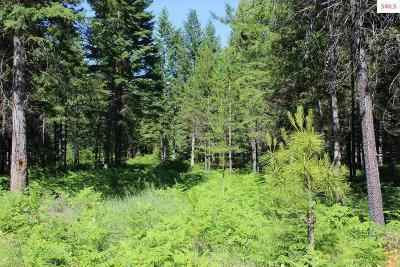 Boundary County Residential Lots & Land For Sale: Lot 1 Hunter