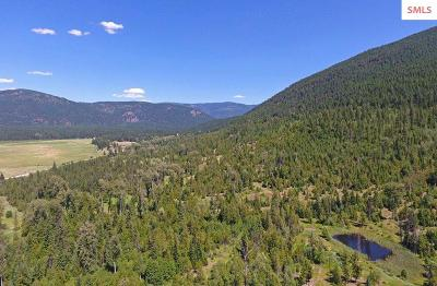 Bonners Ferry Residential Lots & Land For Sale: 53077 Hwy 95