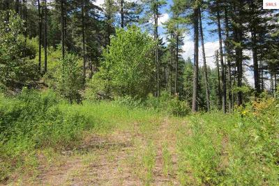 Sandpoint Residential Lots & Land For Sale: Lot 1c Summit Dr.