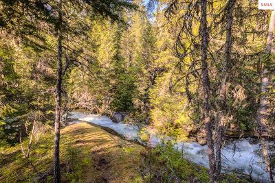 Priest Lake Residential Lots & Land For Sale: Lot 27 Ridgeview Lane