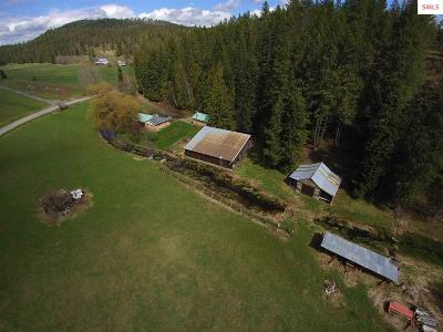 Sandpoint Single Family Home For Sale: 496 Old Highway