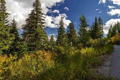 Mountainside, Schweitzer Residential Lots & Land For Sale: Nna Telemark Road