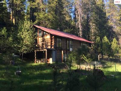 Bonners Ferry Single Family Home For Sale: 875 Moyie River Rd